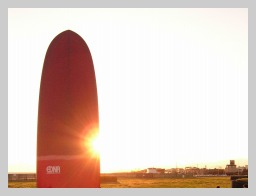 EDNA SURFBOARDS 1